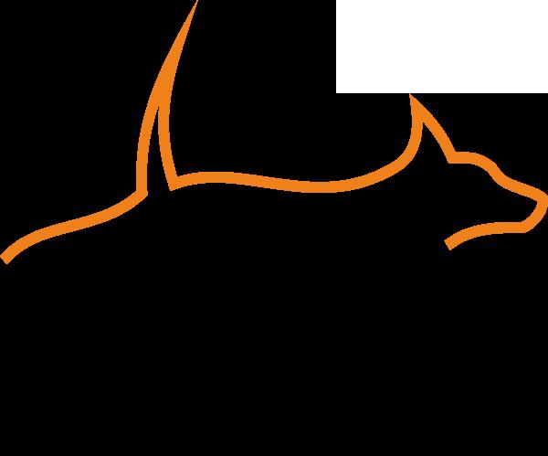 Syrius Agility logó