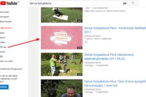 Syrius Kutyaiskola – Karácsonyi vetélkedő 2017. (videó)