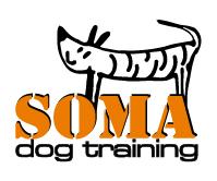 Syrius Kutyaiskola egyéni képzés - Soma dog training